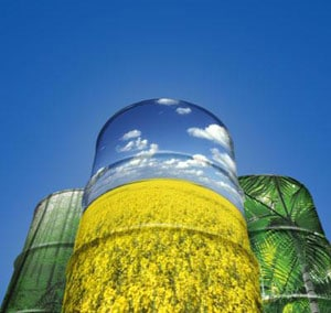 Role of the EU starch industry in the development of the EU starch-based chemistry sector